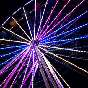 The Ferris Wheel at the North Florida Fair.