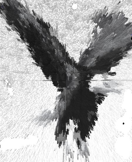 eagle6 copy
