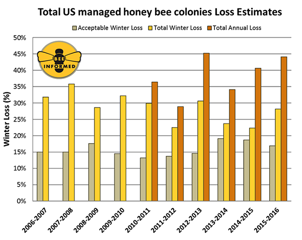 bee graph